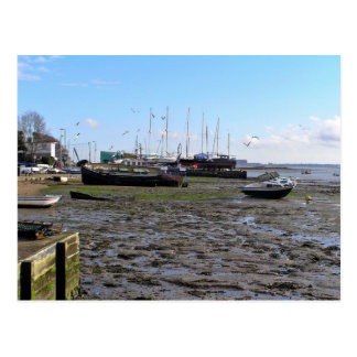 Low Tide Postcard
