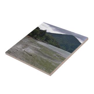Low tide ceramic tile