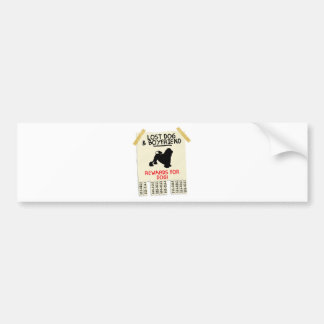 Lowchen Car Bumper Sticker