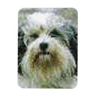 lowchen.png rectangular photo magnet