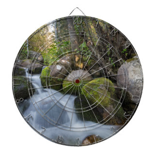 Lower Bell's Canyon River Dartboard