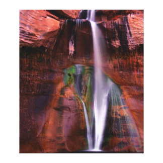 Lower Calf Splashes Down In Grand Canvas Print