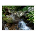 Lower Dark Hollow Falls, Shenandoah Postcard