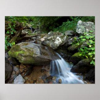 Lower Dark Hollow Falls, Shenandoah Poster