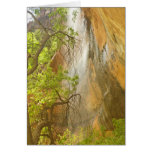 Lower Emerald Pool Waterfall Red rock and Tree Card