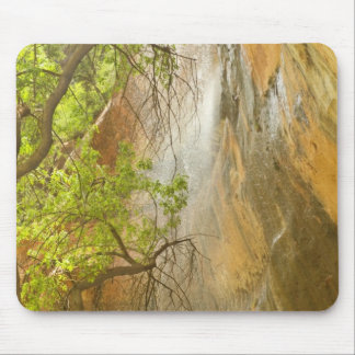 Lower Emerald Pool Waterfall Red rock and Tree Mouse Pad
