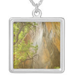 Lower Emerald Pool Waterfall Red rock and Tree Square Pendant Necklace
