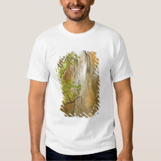 Lower Emerald Pool Waterfall Red rock and Tree Tshirt