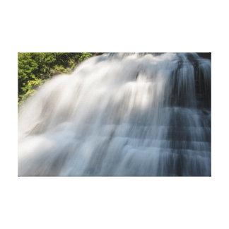 Lower Falls, Enfield Glen, New York Canvas Print
