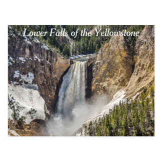 Lower Falls of the Yellowstone Postcard