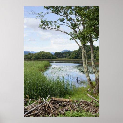 Lower Lake, Killarney Print