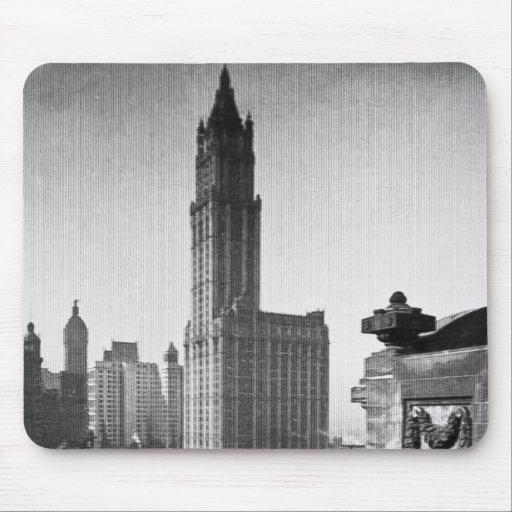 Lower Manhattan New York City del edificio de Wool Tapete De Raton