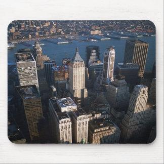 Lower Manhattan Tapete De Raton