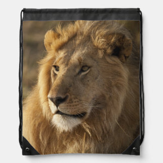 Lower Mara in the Masai Mara Game Reserve, Drawstring Bag
