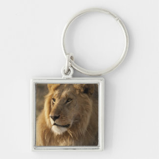 Lower Mara in the Masai Mara Game Reserve, Keychain