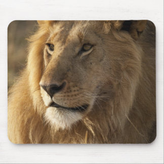 Lower Mara in the Masai Mara Game Reserve, Mouse Pad