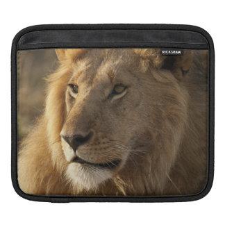 Lower Mara in the Masai Mara Game Reserve, Sleeve For iPads