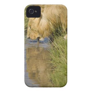 Lower Mara, Masai Mara Game Reserve, Kenya, Case-Mate iPhone 4 Case