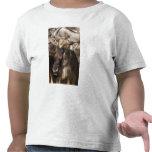 Lower Mara, Masai Mara Game Reserve, Shirt