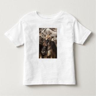 Lower Mara, Masai Mara Game Reserve, T Shirt