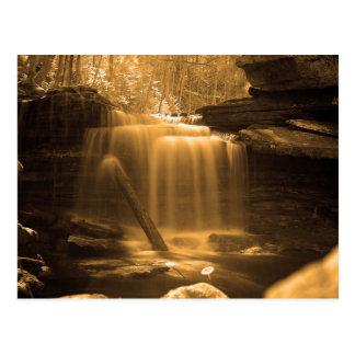 Lower Polly Branch Falls Postcard