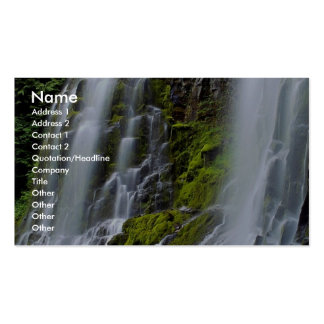 Lower Proxy Falls, Willamette National Forest, Ore Double-Sided Standard Business Cards (Pack Of 100)