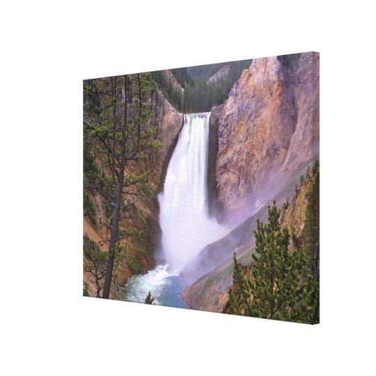 Lower Yellowstone Falls, Grand Canyon of Canvas Print