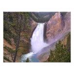 Lower Yellowstone Falls, Grand Canyon of Photo Print