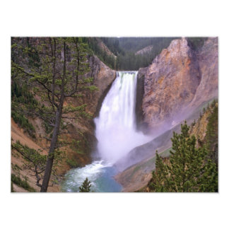Lower Yellowstone Falls, Grand Canyon of Photo Print