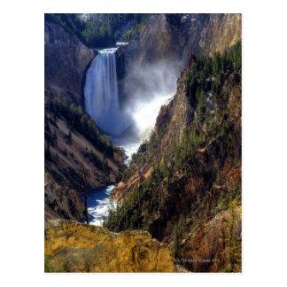 Lower Yellowstone Falls, Yellowstone National Postcard