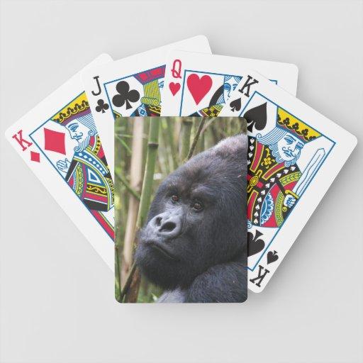 Lowland Gorilla Deck of Cards