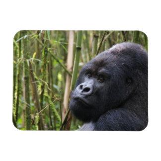 Lowland Gorilla Flexible Magnet
