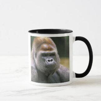 Lowland gorilla. Gorilla Gorilla. Mug