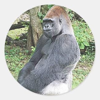 Lowland Gorilla in Sitting Pose Classic Round Sticker