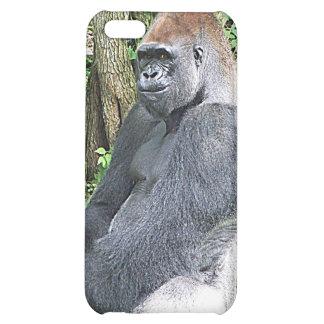 Lowland Gorilla in Sitting Pose Case For iPhone 5C
