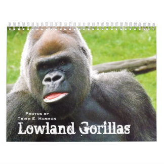 Lowland Gorillas of the Kansas City Zoo Calendar