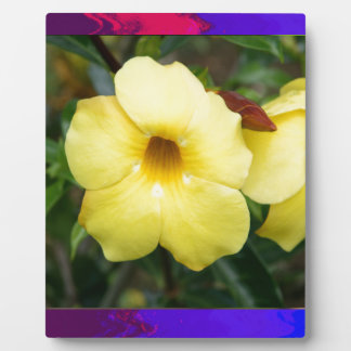 LowPRICE Elegant Gifts ORCHID Flower Yellow Bright Display Plaque