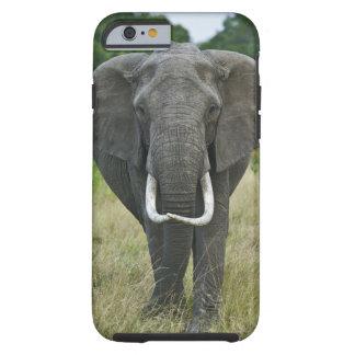 Loxodonta de Elephantna del africano, juego de Funda De iPhone 6 Tough