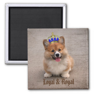 Loyal and Royal Corgi Puppy Magnet