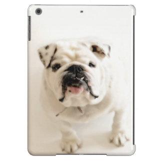 Loyal White Bulldog Photograph iPad Air Case