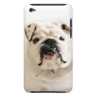 Loyal White Bulldog Photograph iPod Case-Mate Cases