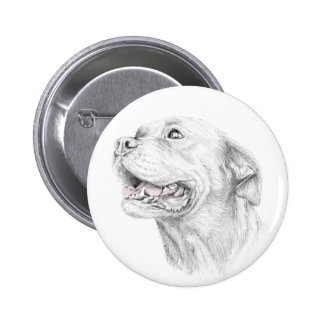Loyalty, An American Staffordshire Terrier Button