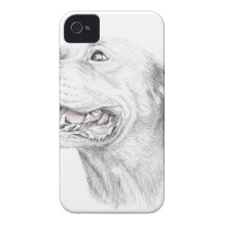 Case-Mate iPhone 4 Barely There Universal Case with Bull Terrier Phone Cases design