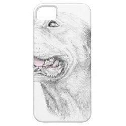 Case-Mate Vibe iPhone 5 Case with Labrador Retriever Phone Cases design