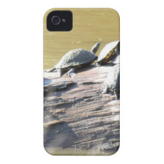Lsu Turtles.jpg Iphone 4 Case at Zazzle