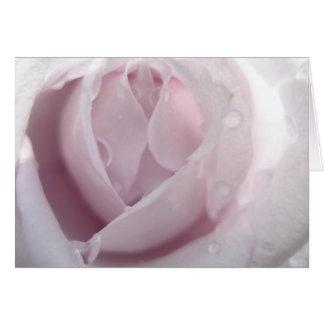 lt purplerose greeting cards