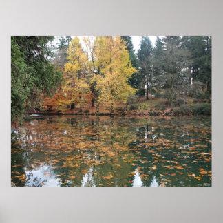 Luarelhurst Park in the Fall Poster