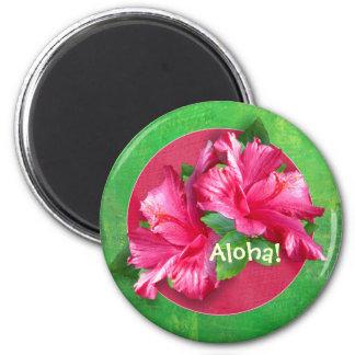 Luau Aloha Pink Hibiscus Magnets