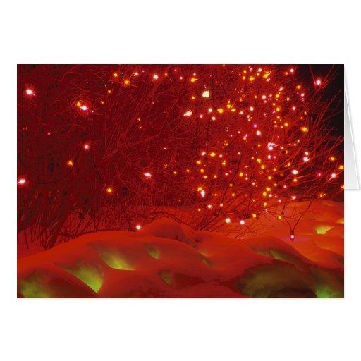 Luces de navidad en nieve tarjetón