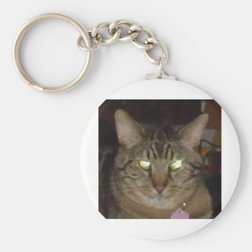LUCES DEL CAT LLAVEROS
